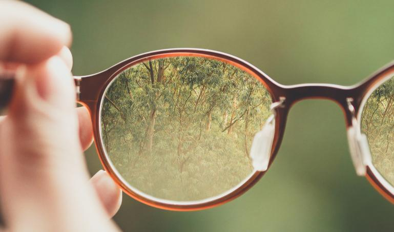 glasses focusing on trees in forest
